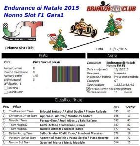 Endurance di Natale Gara1 2015